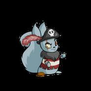 Usul pirate