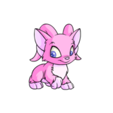 Acara pink