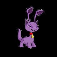 Aisha purple