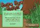 Smug Bug Smite Screenshot 1