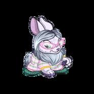 Elderg bunny