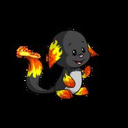 Kacheek fire