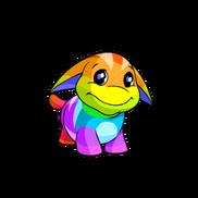 Poogle rainbow