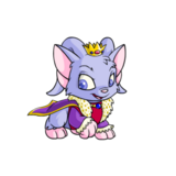 Acara royalboy