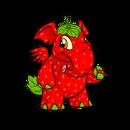 Elephante strawberry