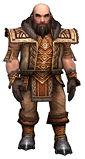 Ogden Stonehealer Deldrimor armor