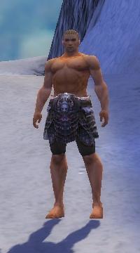 Armure de Norn-Guerrier-Jambes-Homme