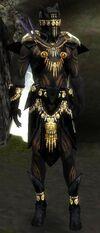 Armure de Kurzick d'élite-Ritualiste-Homme