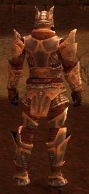 Armure d'Asura-Guerrier-Homme-de dos