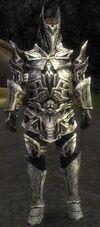 Armure de Kurzick d'élite-Guerrier-Homme