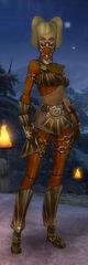 Armure de Lancier-Rôdeur-Femme