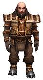 Ogden Stonehealer brotherhood armor
