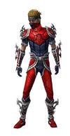 Armure de Norn-Assassin-Homme