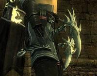 Kamas du dragon