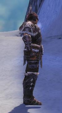 Armure de Norn-Guerrier-Homme-de profil