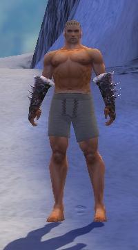 Armure de Norn-Guerrier-Bras-Homme