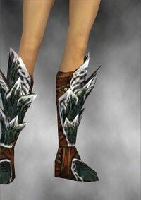 Armure de Luxon-Guerrier-Pieds-Femme