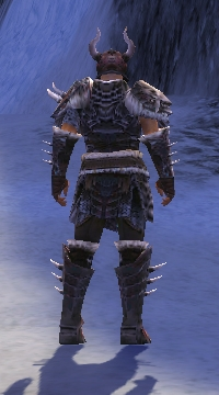 Armure de Norn-Guerrier-Homme-de dos