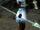 Bâton spectral