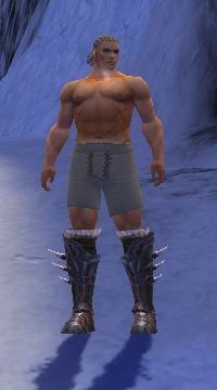 Armure de Norn-Guerrier-Pieds-Homme