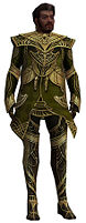Norgu Primeval armor