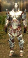 Armure d'Asura-Guerrier-Homme
