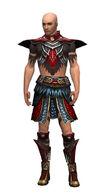 Armure de Deldrimor-Ritualiste-Homme