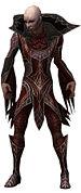 Olias Primeval armor