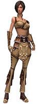 Acolyte Jin Zaishen armor