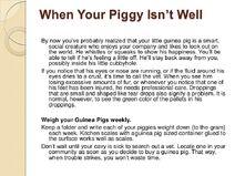 Guinea-pig-care-sheet-slideshow-13-728