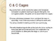 Guinea-pig-care-sheet-slideshow-6-728