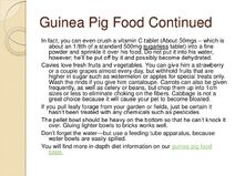 Guinea-pig-care-sheet-slideshow-12-728