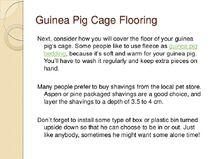 Guinea-pig-care-sheet-slideshow-9-728