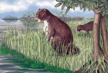 Giantguinea-374x252