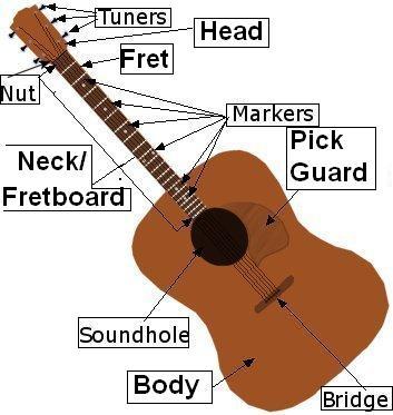 Anatomy of the Guitar | Guitar Wiki | FANDOM powered by Wikia