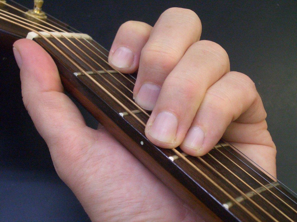 Chord Guitar Wiki Fandom Powered By Wikia