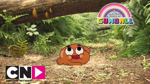 ♬ Sur le chemin ♪, la chanson de Darwin Le Monde Incroyable de Gumball Cartoon Network