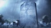 RIP Gumball 2011-2019