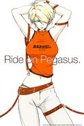 For The Barrel - Ride on Pegasus
