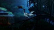 G-Reco Movie II Animal 29