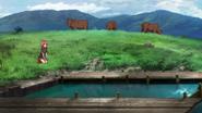 G-Reco Movie II Animal 16