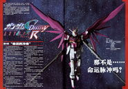 SEED Destiny Astray R 09