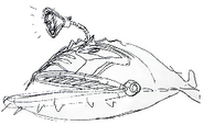 Ankou Gundam