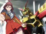 Gundam Astray Red Frame Flame