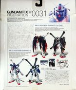 GFF 0031 CrossboneX3 box-back