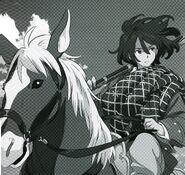G-Reco Illustration Bellri on Horse