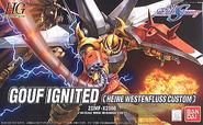HG GOUF Ignited (Heine Westenfluss Custom) Cover