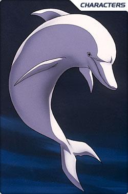Whitedolphin p1