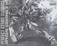 MG Perfect Strike Gundam Special Coating Ver