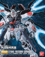 MGStrikeFreedom-Okawara